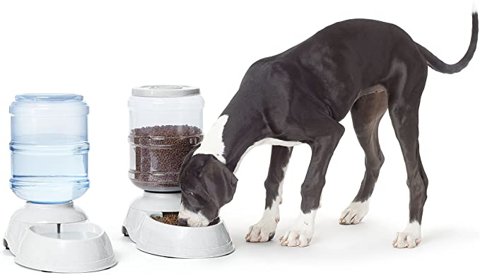 Amazon Basics Gravity Pet Food Feeder and Water Dispensers