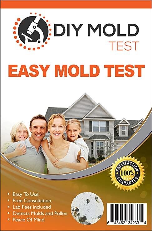 DIY Mold Test